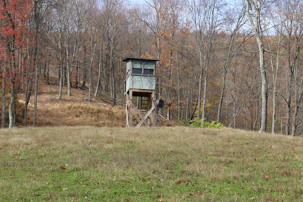 Whitetail Deer Hunting Blind