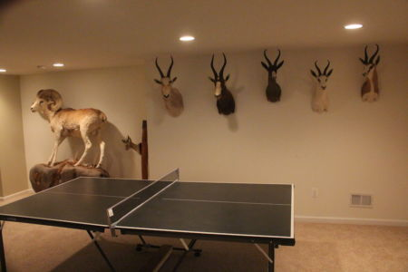 Whitetail Deer Hunting Ping Pong