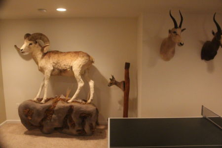 Whitetail Deer Hunting Cabin Lodging